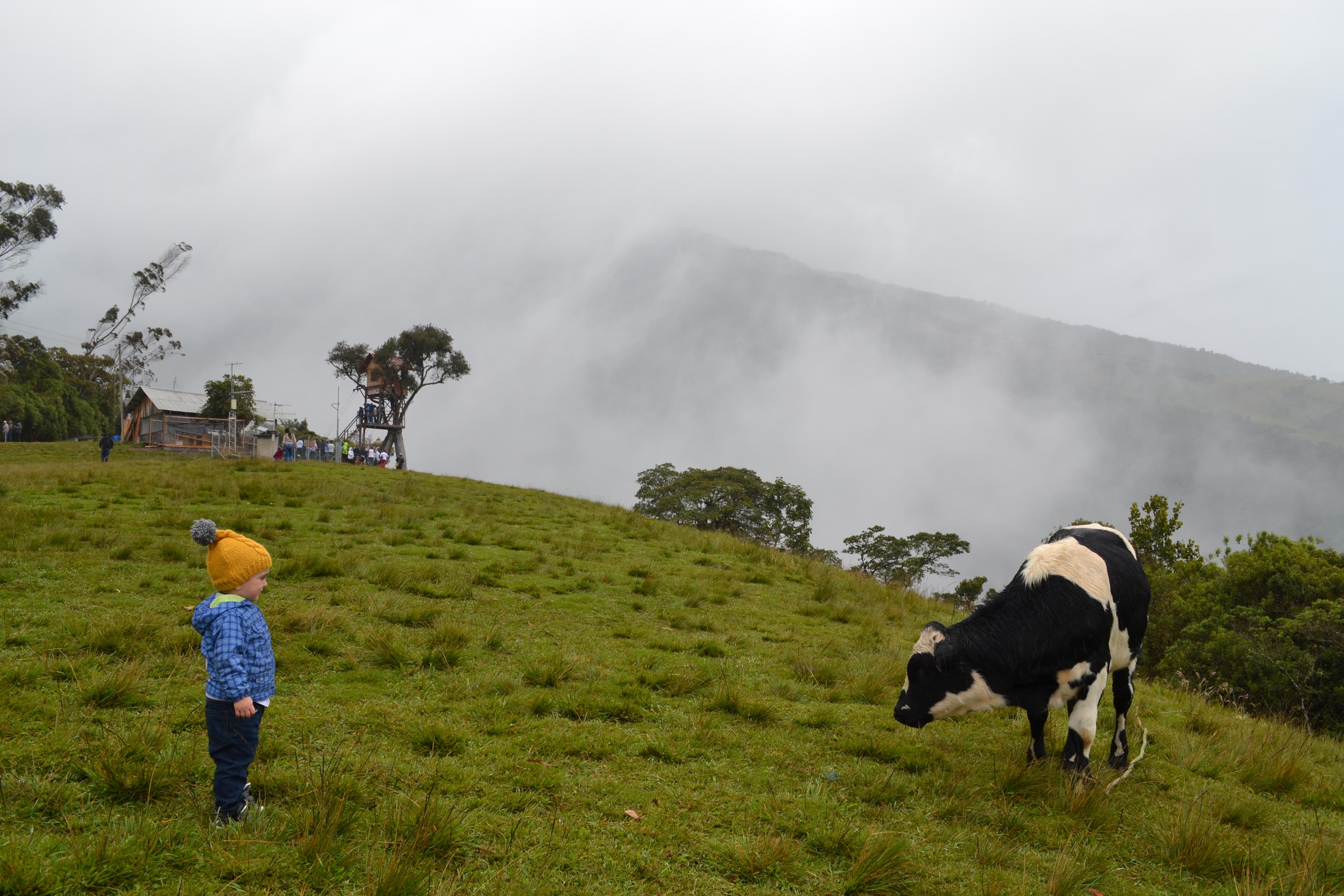 Ekwador?